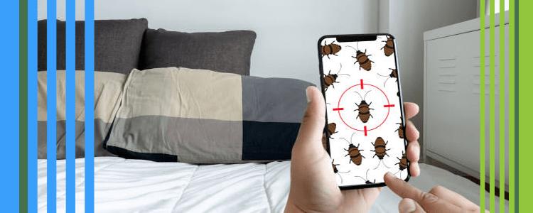 Best Cockroach Exterminator Services