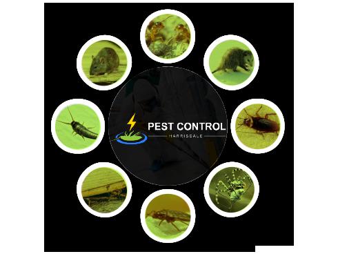 Pest Control Harrisdale